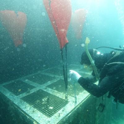 潜水作業⑵